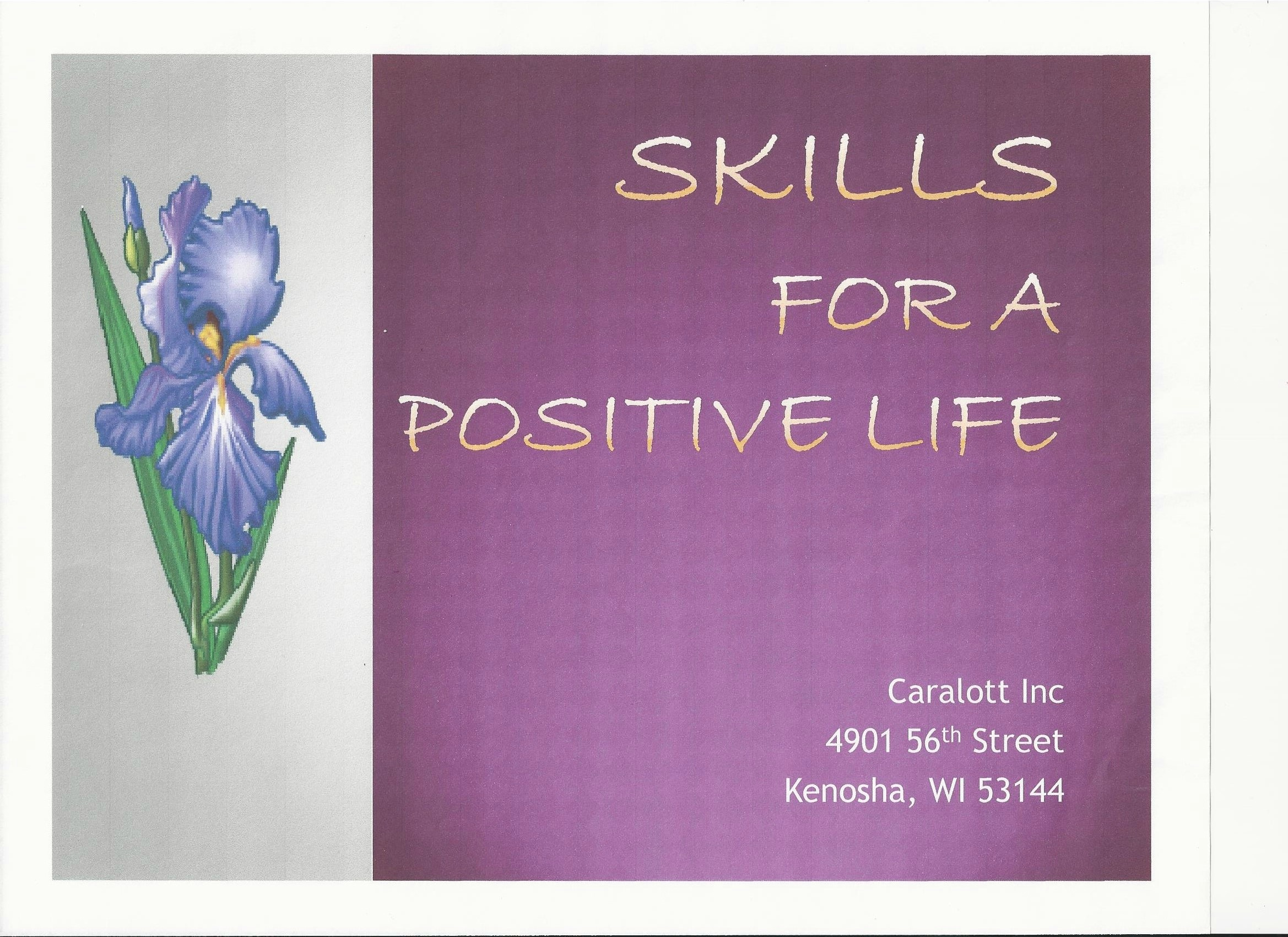 skills_for_a_positive_life_cover[4].jpeg